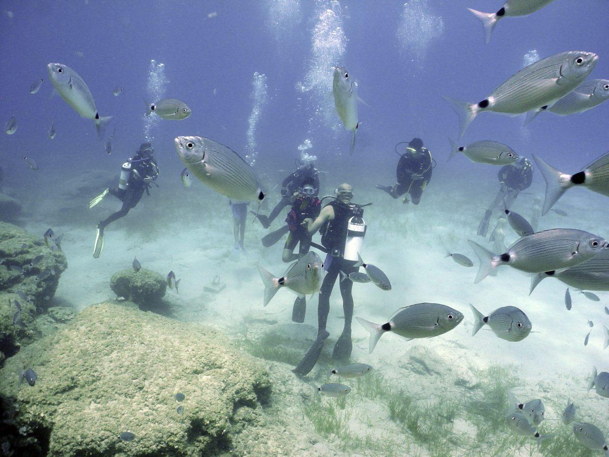 scufundari in Cipru