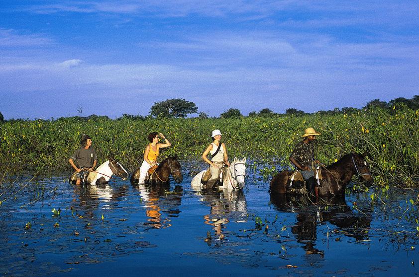 Pantanal, obiective turistice Brazilia