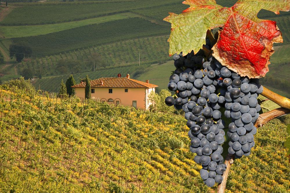 Toscana, destinatii de toamna