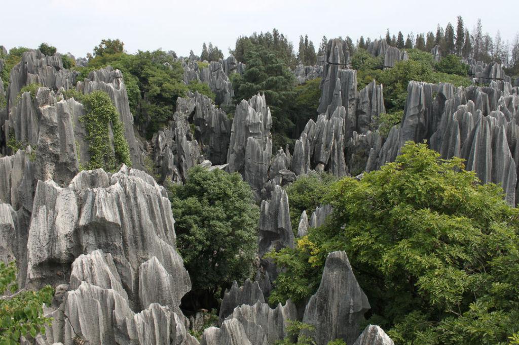 Padurea de piatra din China, top locuri stranii din lume