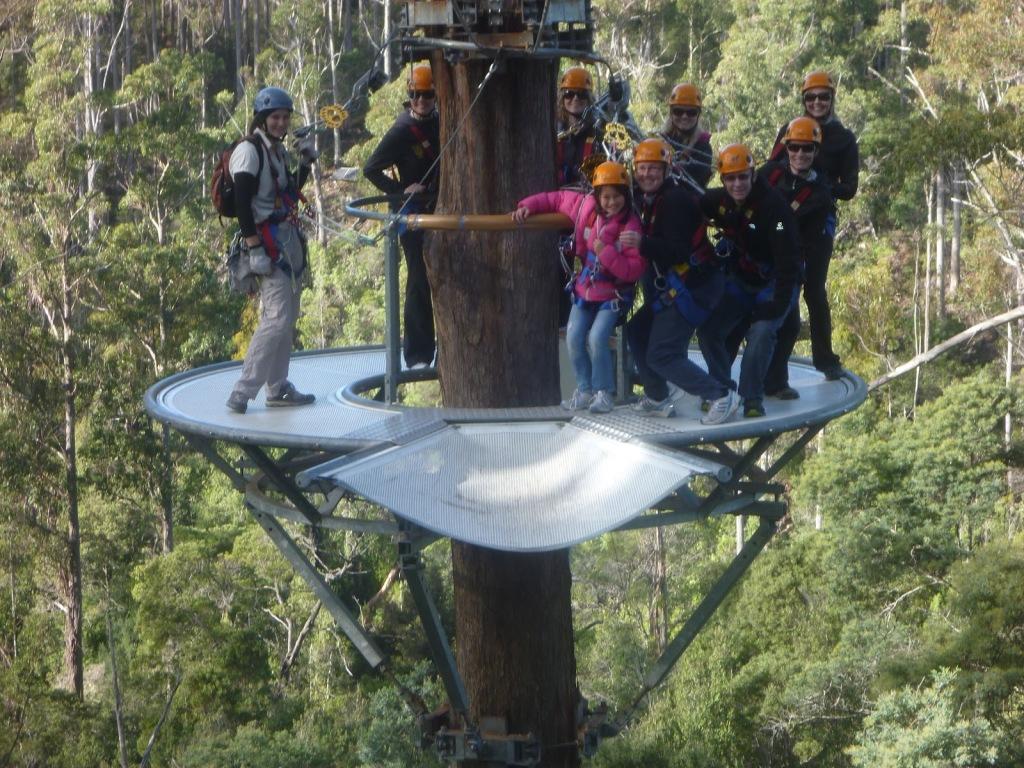 Hollybank Treetops Adventure, cele mai bune tiroliene din lume