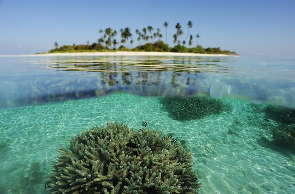 Insula Coral, Maldive, 9 locuri de vizitat intr-o viata