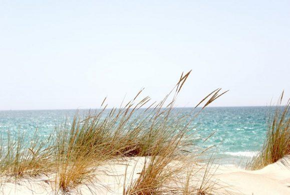 Cele mai linistite plaje de pe litoralul romanesc