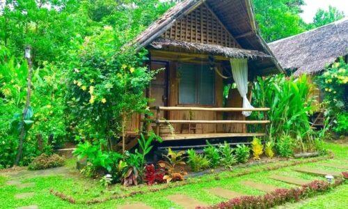 turismul ecologic